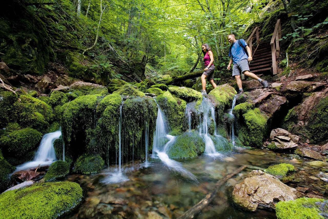 Wandern im Fundy National Park