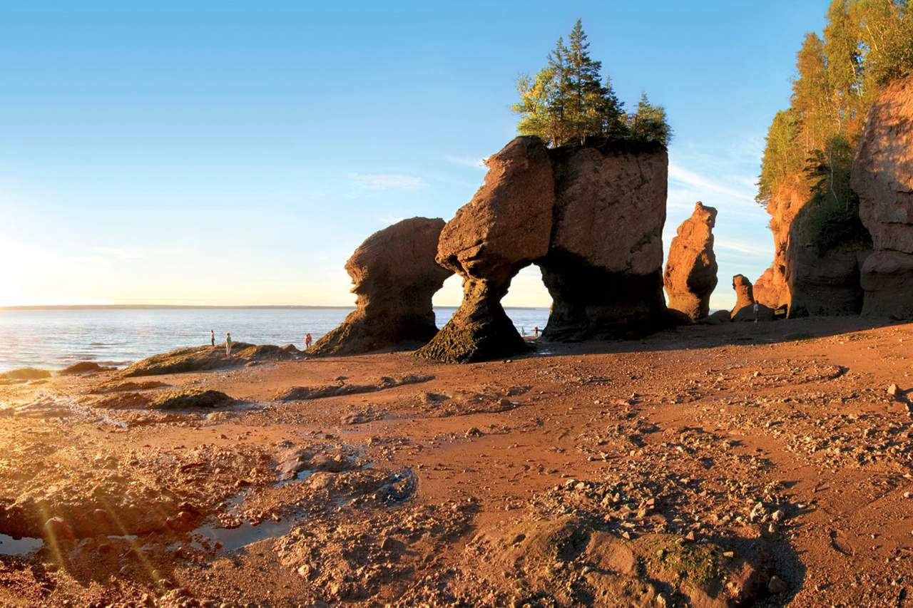 Hopewell Rocks bei Ebbe in der Bay of Fundy, New Brunswick