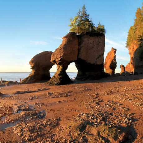 Hopewell Rocks bei Ebbe in der Bay of Fundy, New Brunswick