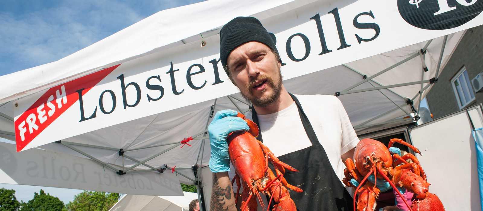 der fangfrische Lobster