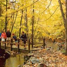 Wandern auf dem Macintosh Brook Trail im Cape Breton Highlands National Park, Nova Scotia