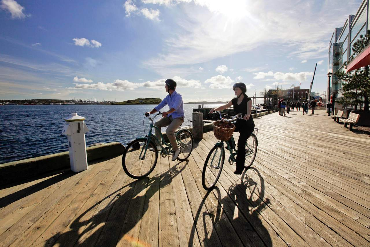 Harbour Bike Tour