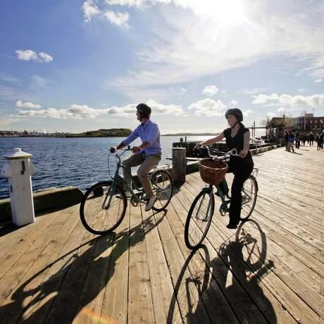 Harbour Bike Tour