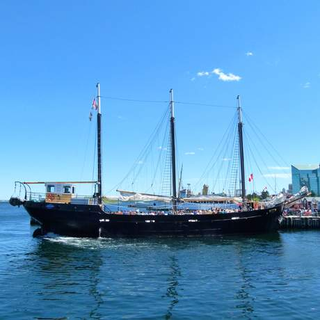 Segelschiff Tall Ship Silva in Halifax