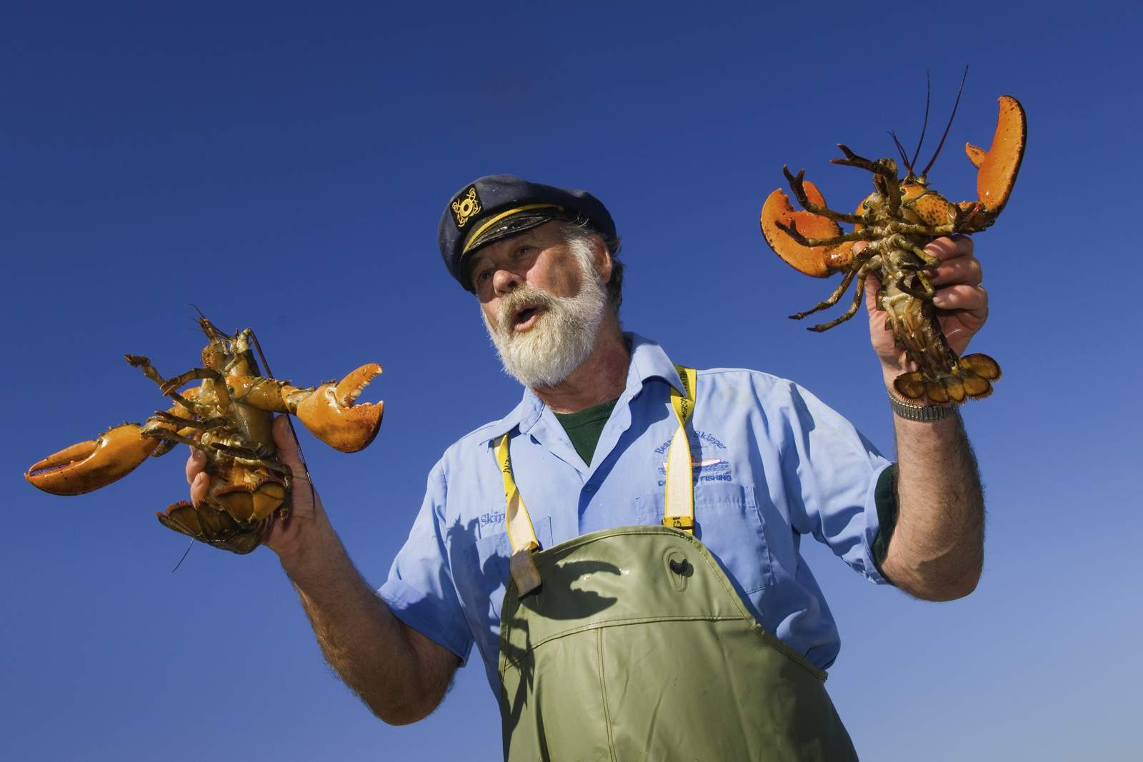 Lobster fisherman Norm Peters, Ãââ,¬â»¢The Bearded SkipperÃââ,¬Å« of Rustico, Prince Edward Island, Canada.