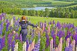 Blumenwiese Prince Edward Island