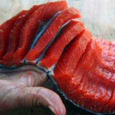 Content Campaign Aboriginal BC, Preparing salmon for wind-drying