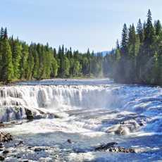 Blick auf die Dawson Falls