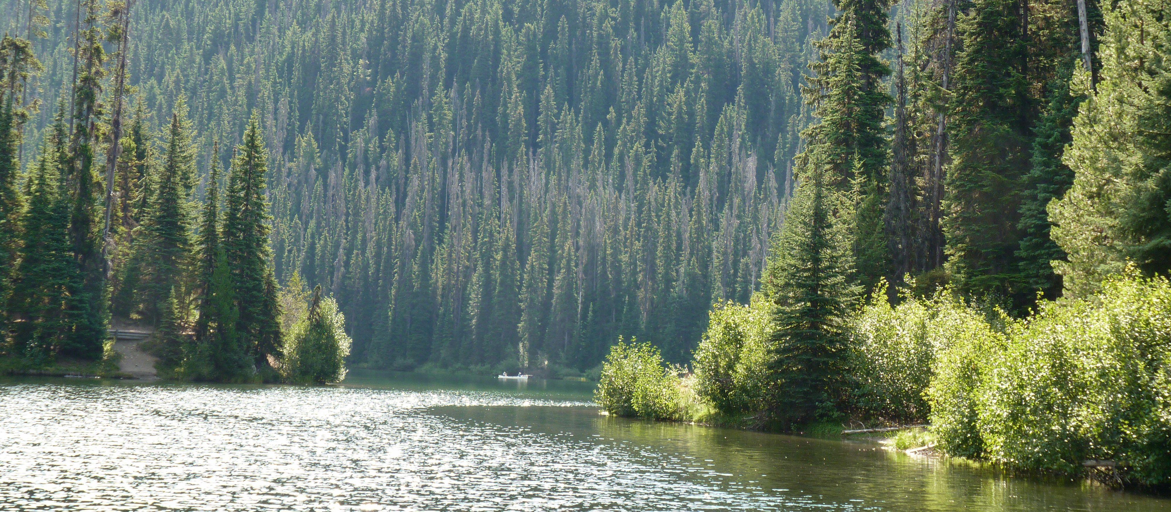 Lightning Lake Campground