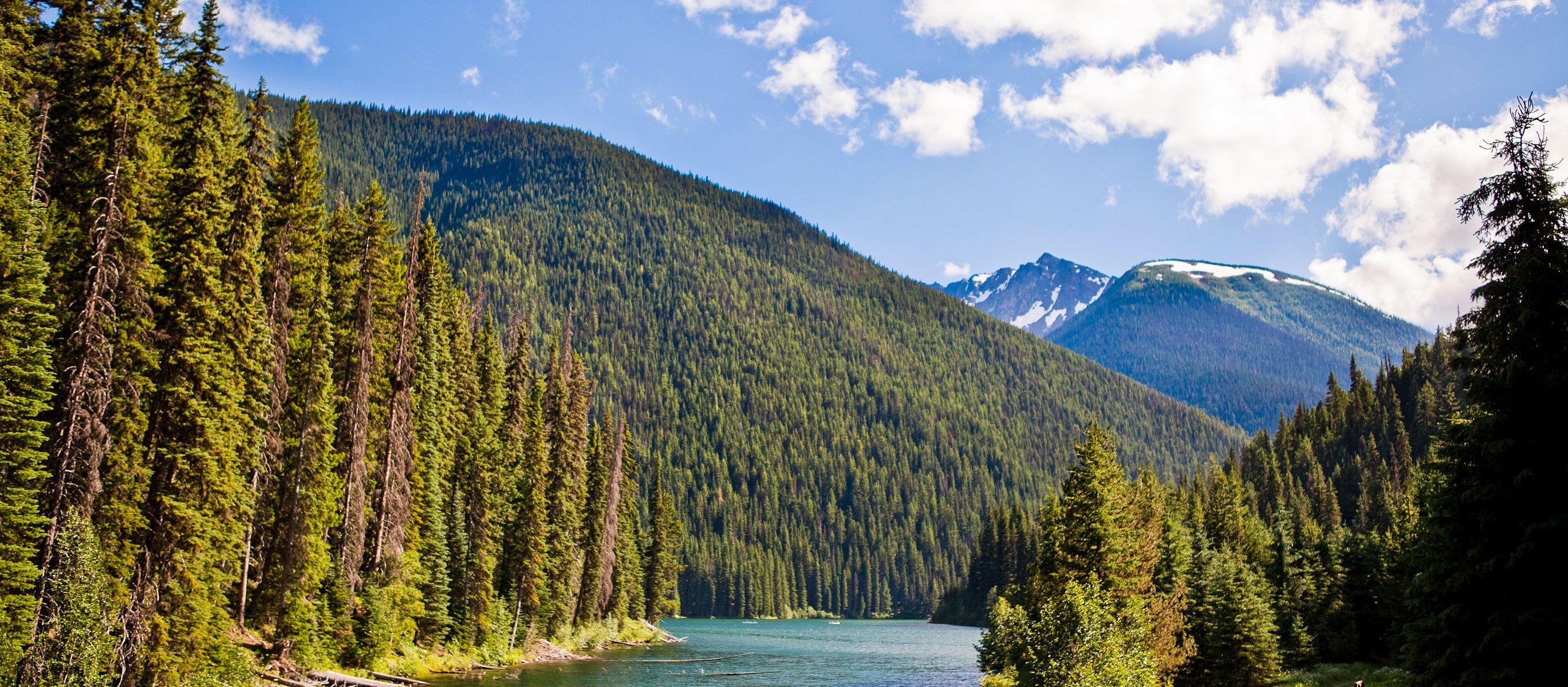 Blick auf den Lightning Lake im Manning Provincial Park in British Columbia