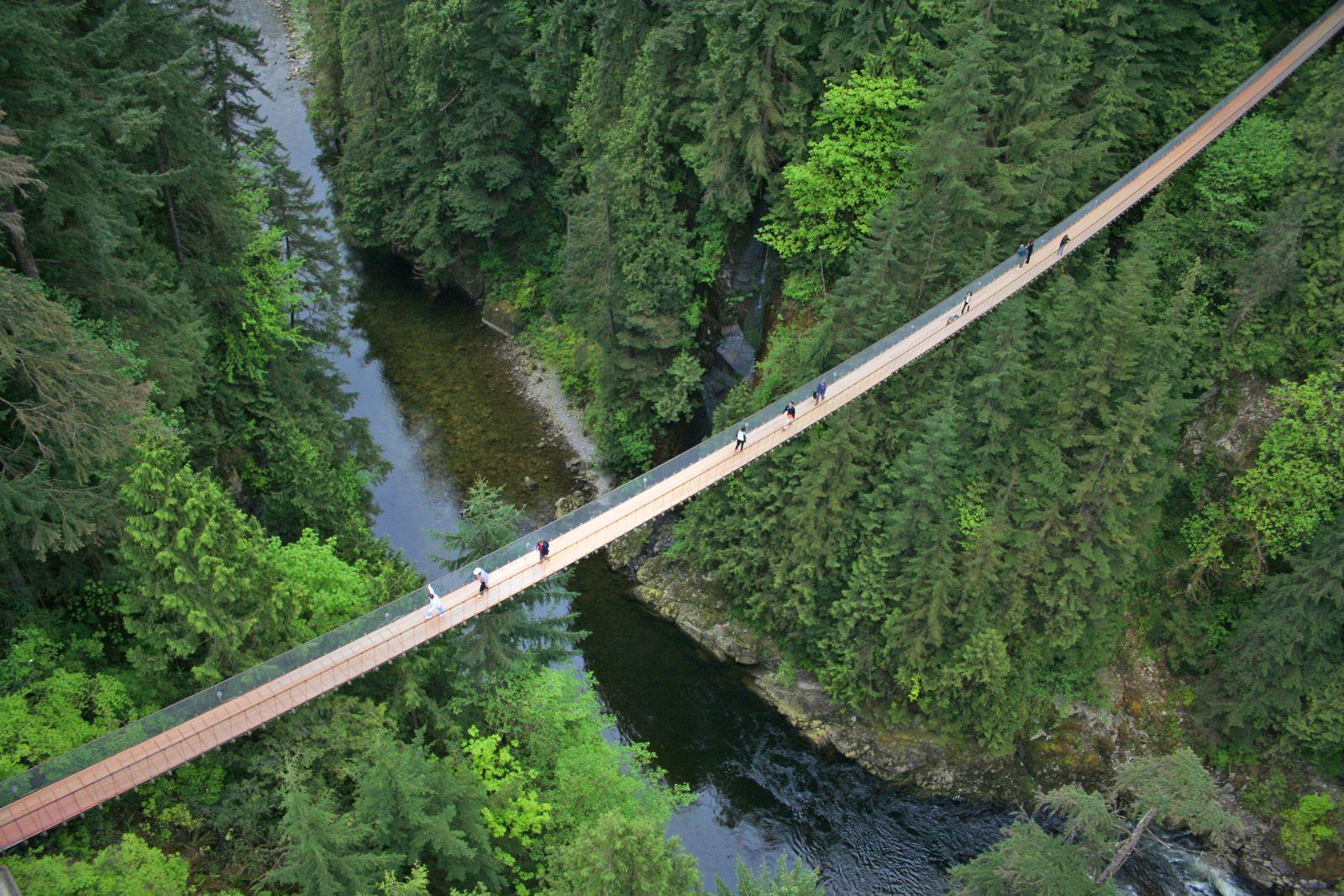 Impression Capilano Suspension Bridge Park