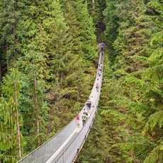 Der Capilano Suspension Bridge Park in Vancouver