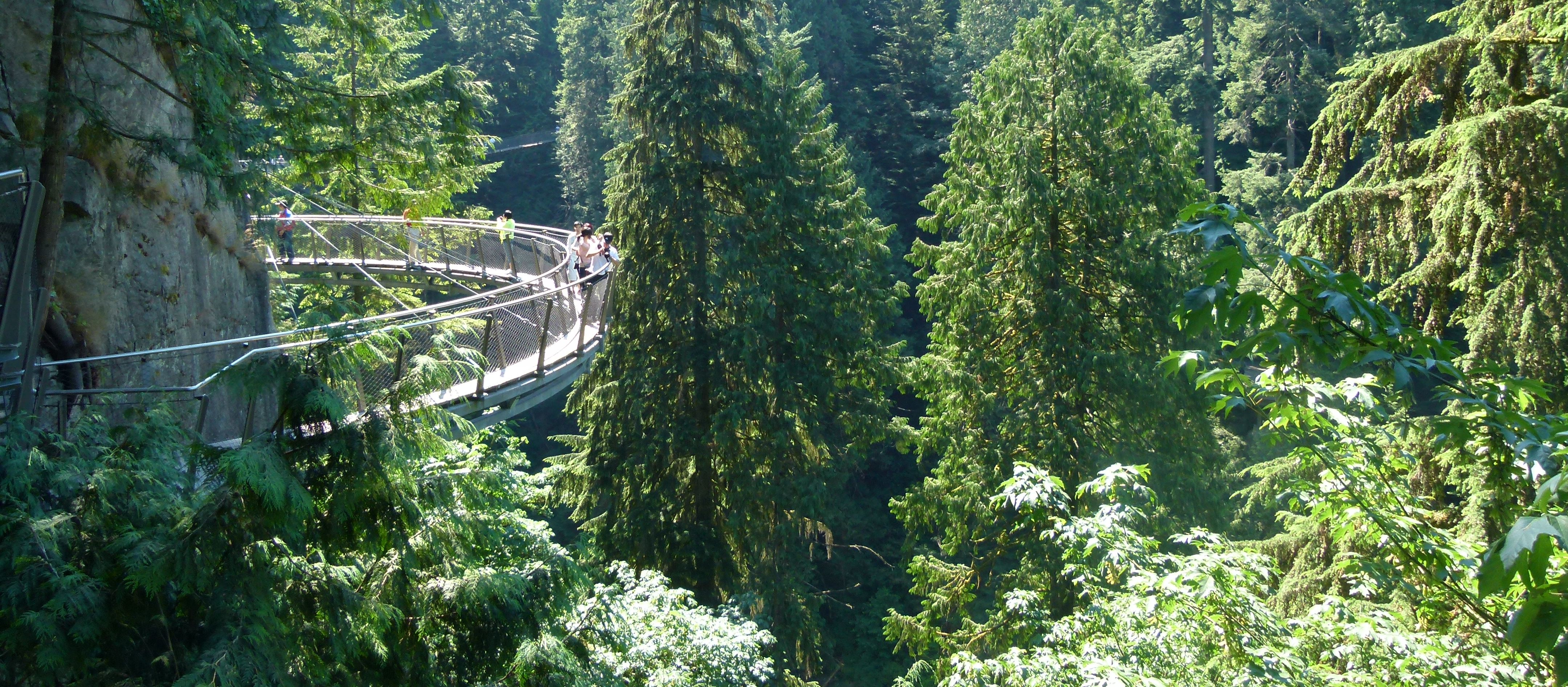 Capilano Suspension Park Skywalk