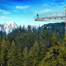 Impression Capilano Suspension Bridge Park