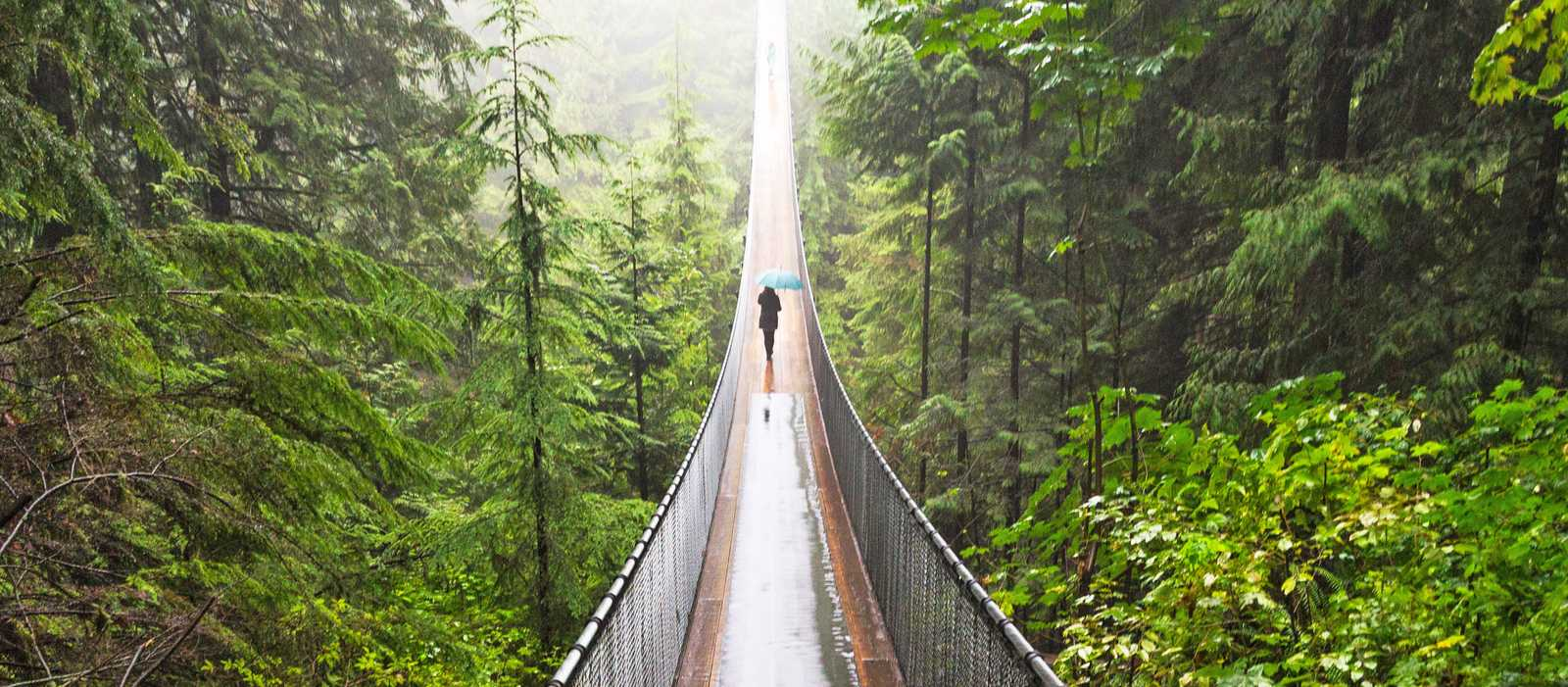 Capilano Suspension Park