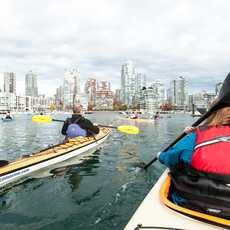 Kayakfahren bei False Creek, Vancouver, British Columbia