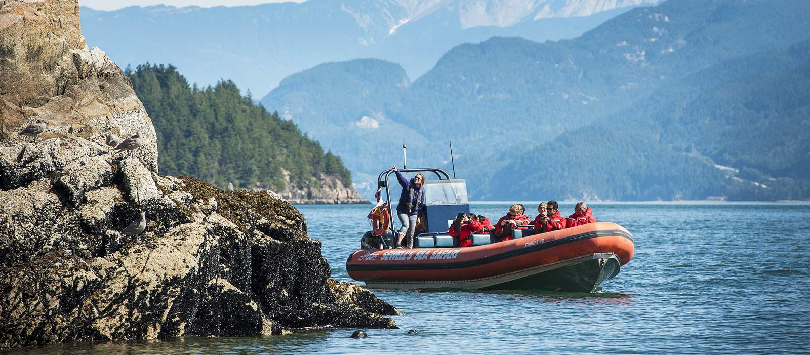 Seawell's Marinas Sea Safari in Vancouver, British Columbia