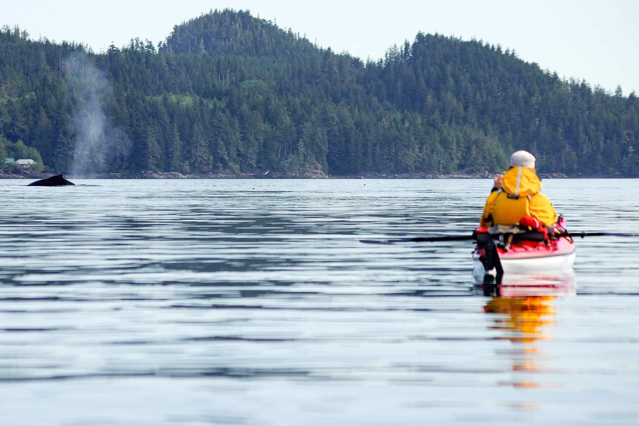 Abenteuer mit dem Oceankajak