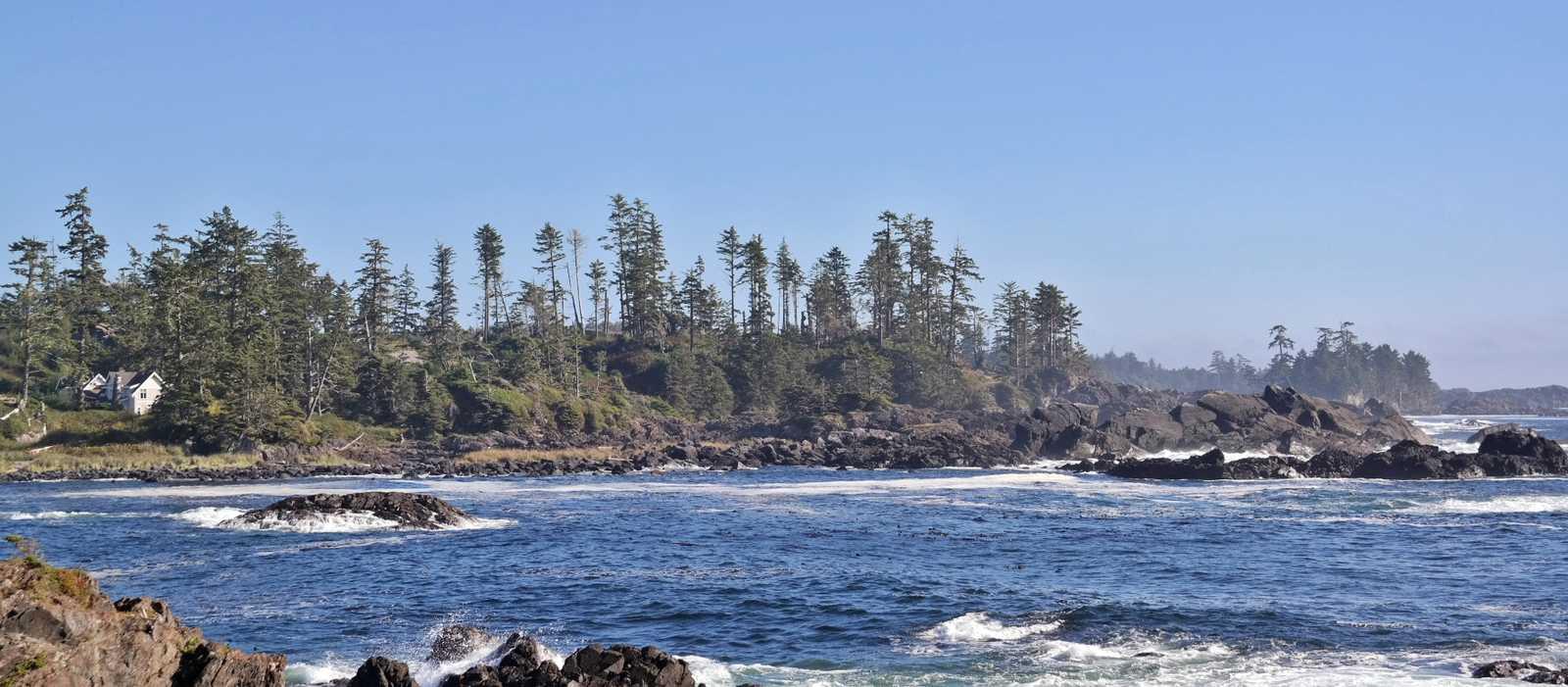 Wild Pacific Trail bei Tofino