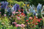 Der Butchart Gardens in Victoria