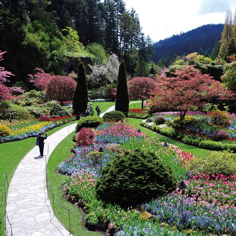 Butchart Gardens-Sunken Garden Spring