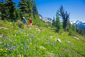 Wandern auf dem Blackcomb in Whistler