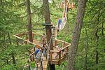 Tree Trek Canopy Walk (Whistler)
