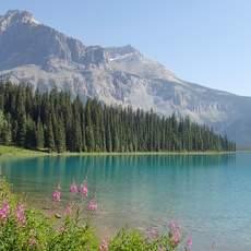 Aussicht auf dem Emerald See im Yoho Nationalpark in British Columbia