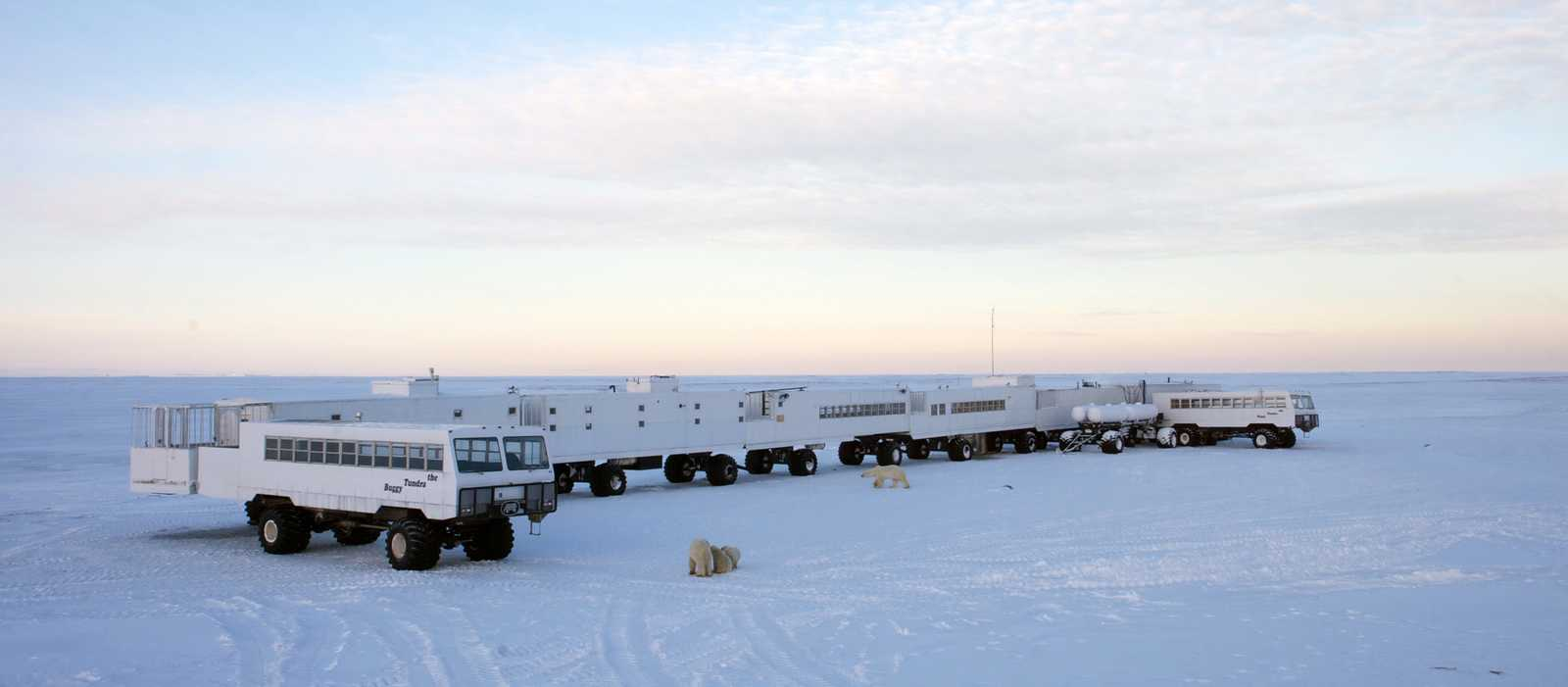 Tundra Buggy Lodge