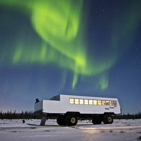 Polarlicht ueber Tundra Buggy
