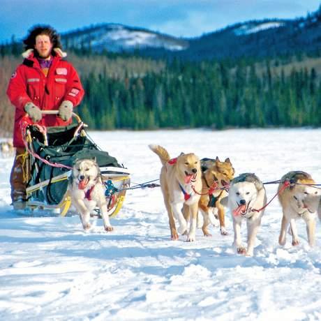 Hundeschlitten-Tour im Yukon