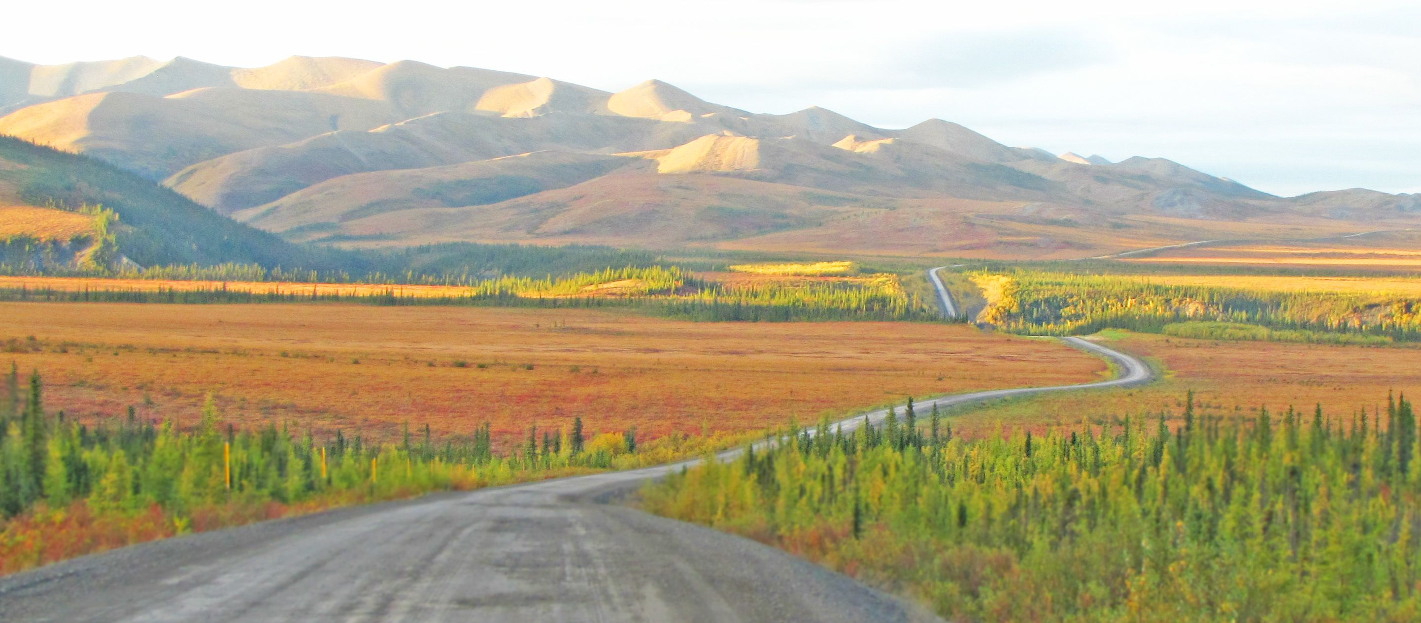 Dempster Highway Indian Summer