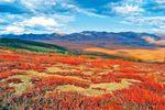 Tal Dempster im Yukon in Kanada