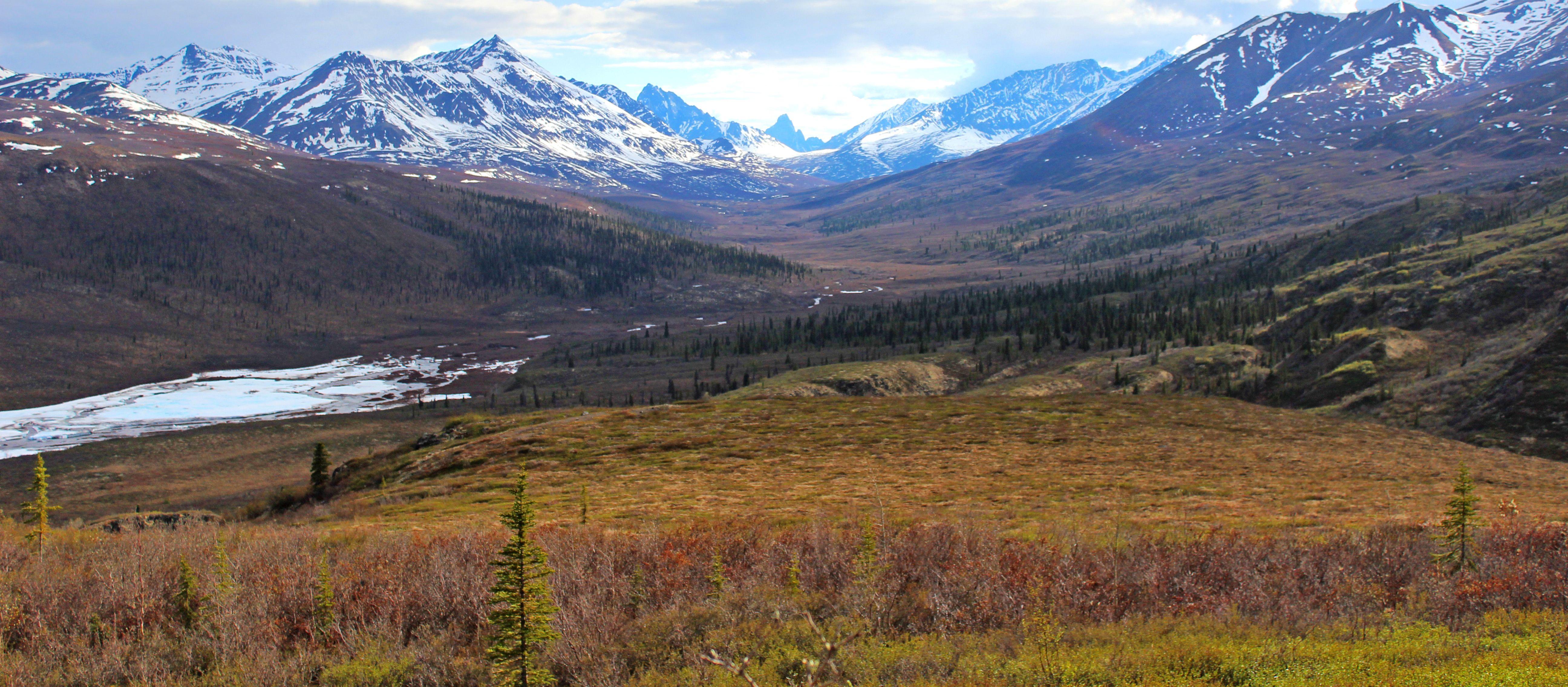 Tombstone National Park im Yukon Territory