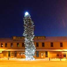 Leuchtender Weihnachtsbaum bei Nacht in Whitehorse