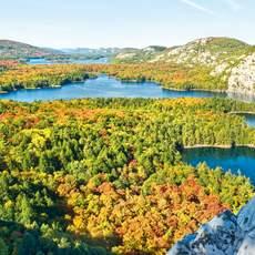 Herbst im Algonquin National Park