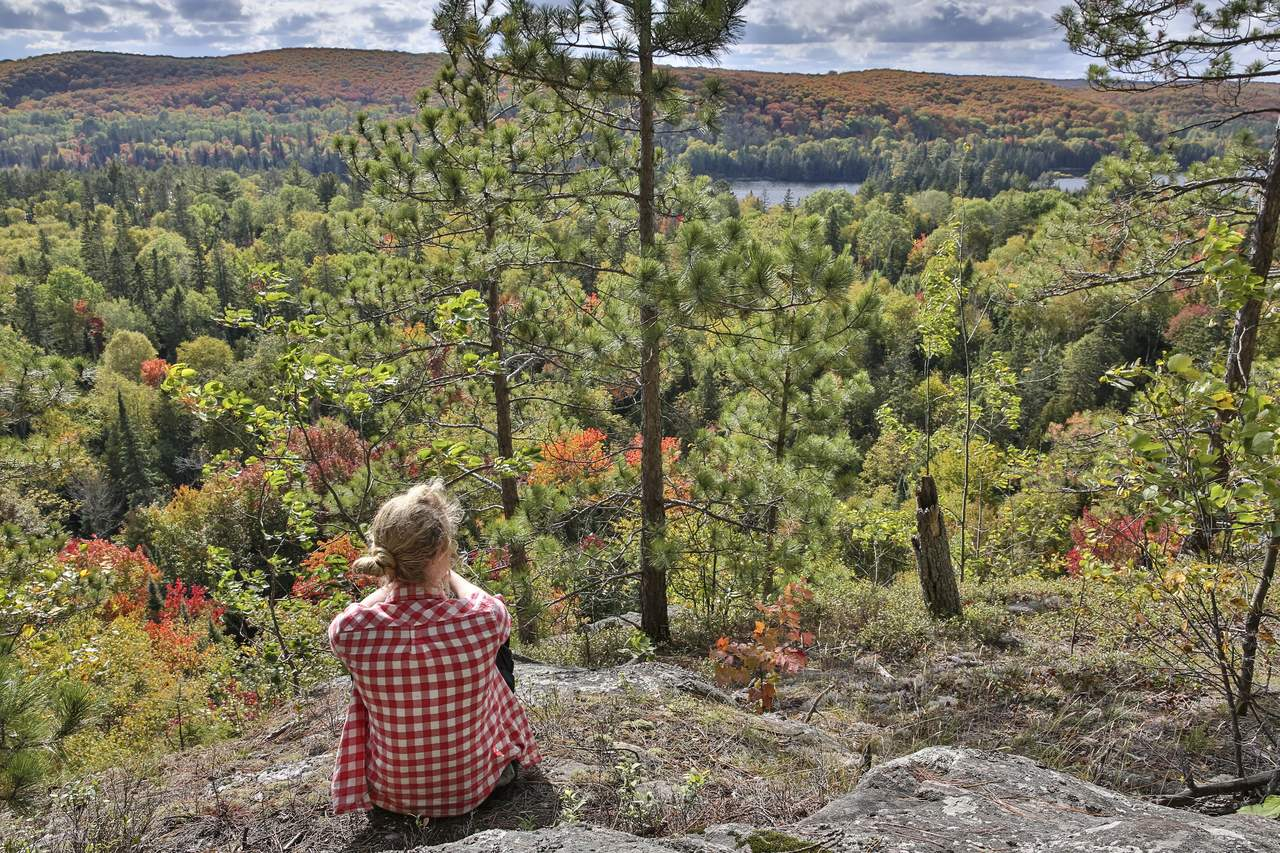 Indian Summer im Algonquin Provincial Park