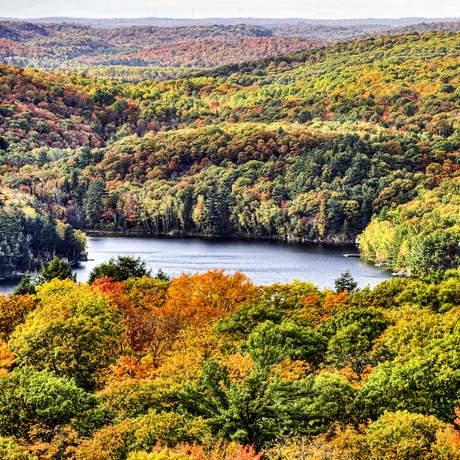 Luftansicht des Algonquin Provincial Parks in Ontario, Kanada