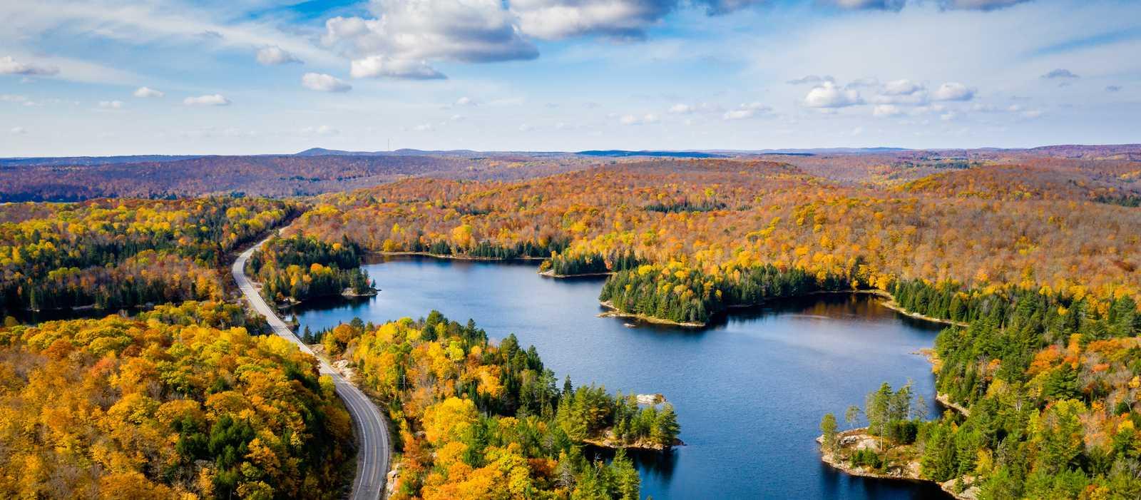 Ein Highway windet sich durch den herbstlichen Wald in Ontario