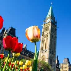 Das Kanadische Parlament in Ottawa, Ontario