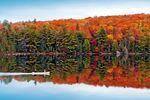 Die schönsten Parks in Ontario