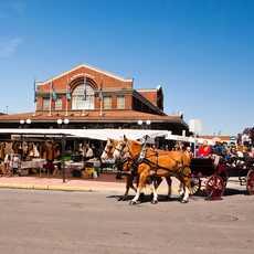 Eine Pferdekutsche vor dem ByWad Market in Ottawa, Kanada