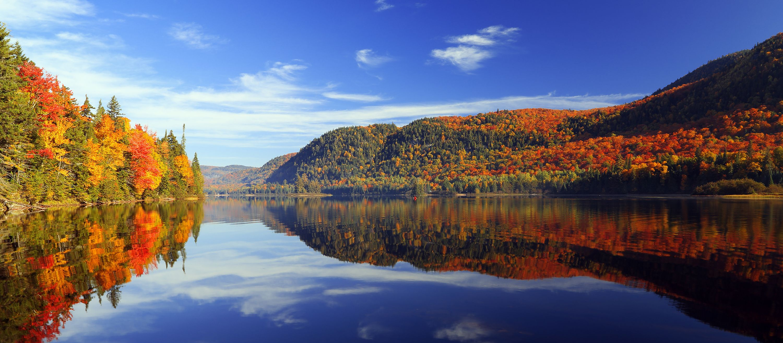 Spiegelungen des herbstlichen Waldes im See