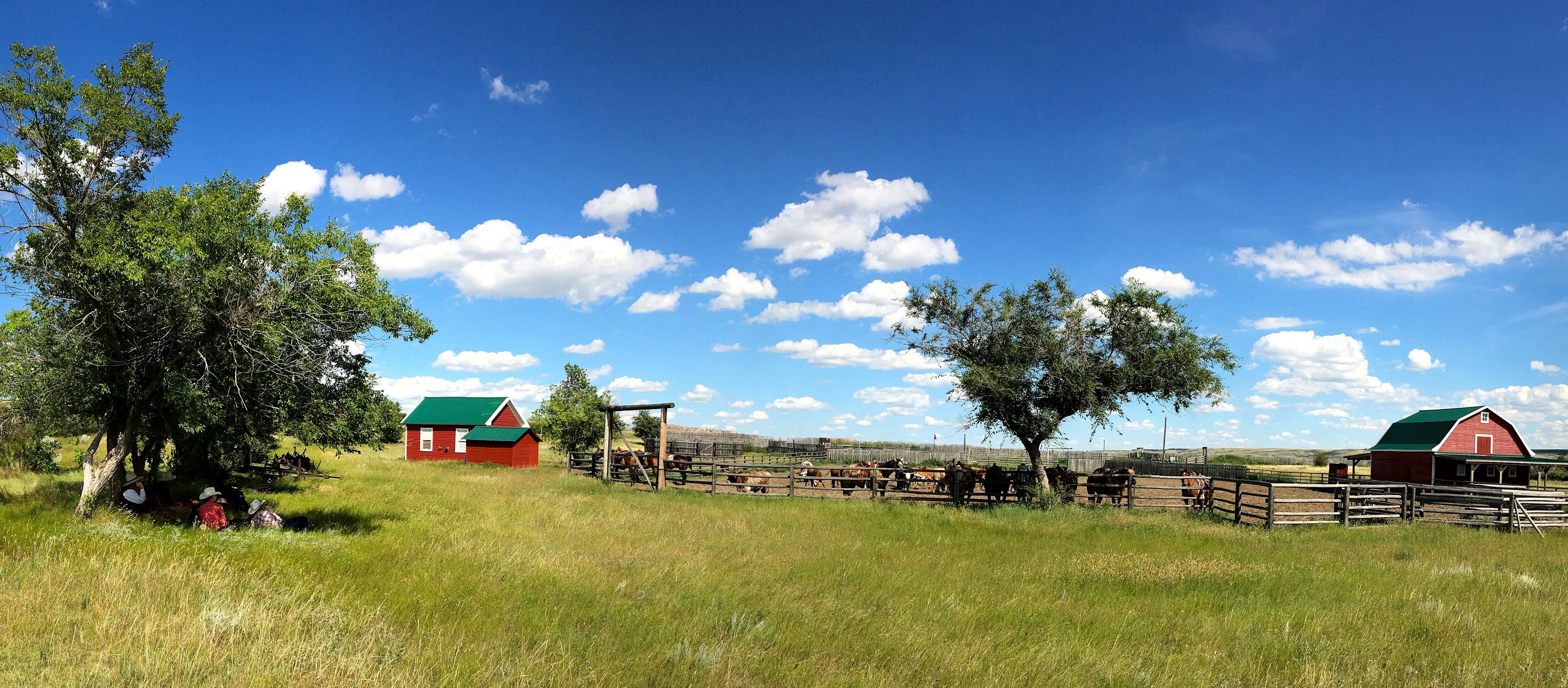 Panorama einer Ranch, Saskatchewan