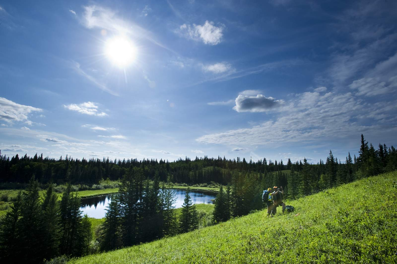 Boreal Trail Meadow Lake