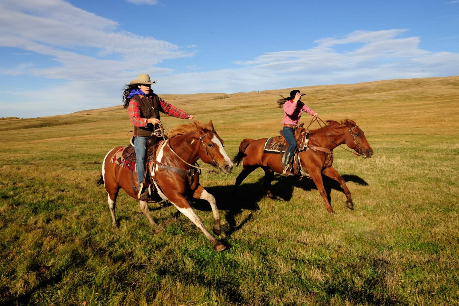 Austritt mit den Pferden