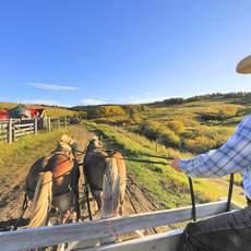 Kutschfahrt auf der Reesor Ranch in Maple Creek, Saskatchewan
