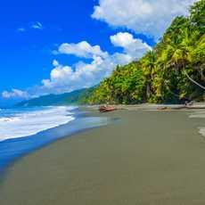 Wild Beach am Corcovado Regenwald, Costa Rica