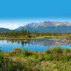 Die wunderschöne Landschaft Alaskas