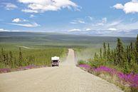 Routenvorschläge USA: Auf dem Dempster Highway